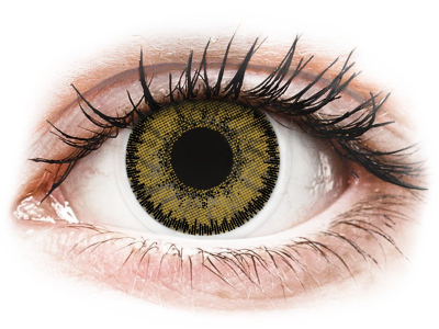 SofLens Natural Colors Dark Hazel - fără dioptrie (2 lentile)