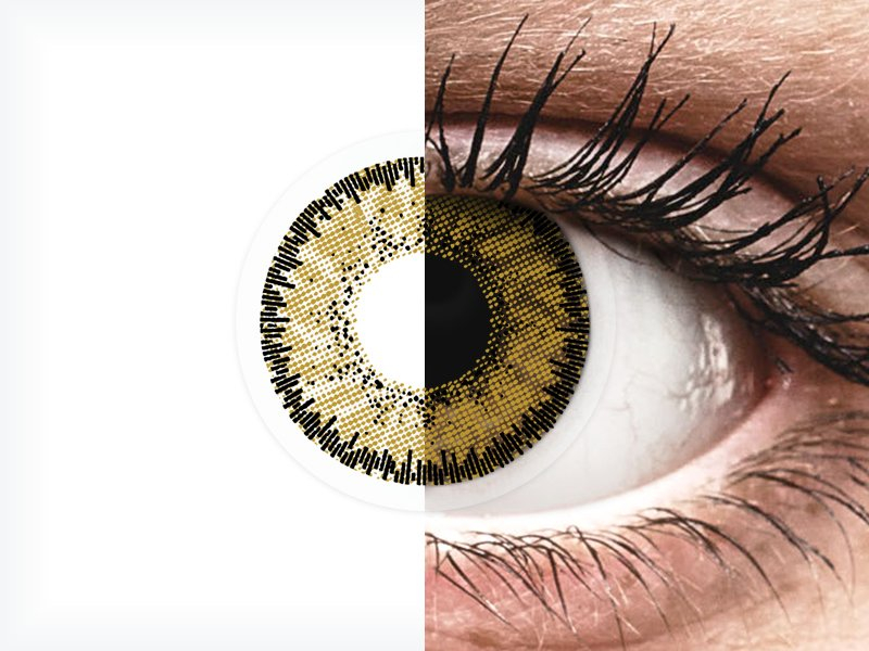 SofLens Natural Colors Dark Hazel - fără dioptrie (2 lentile) - SofLens Natural Colors Dark Hazel - fără dioptrie (2 lentile)